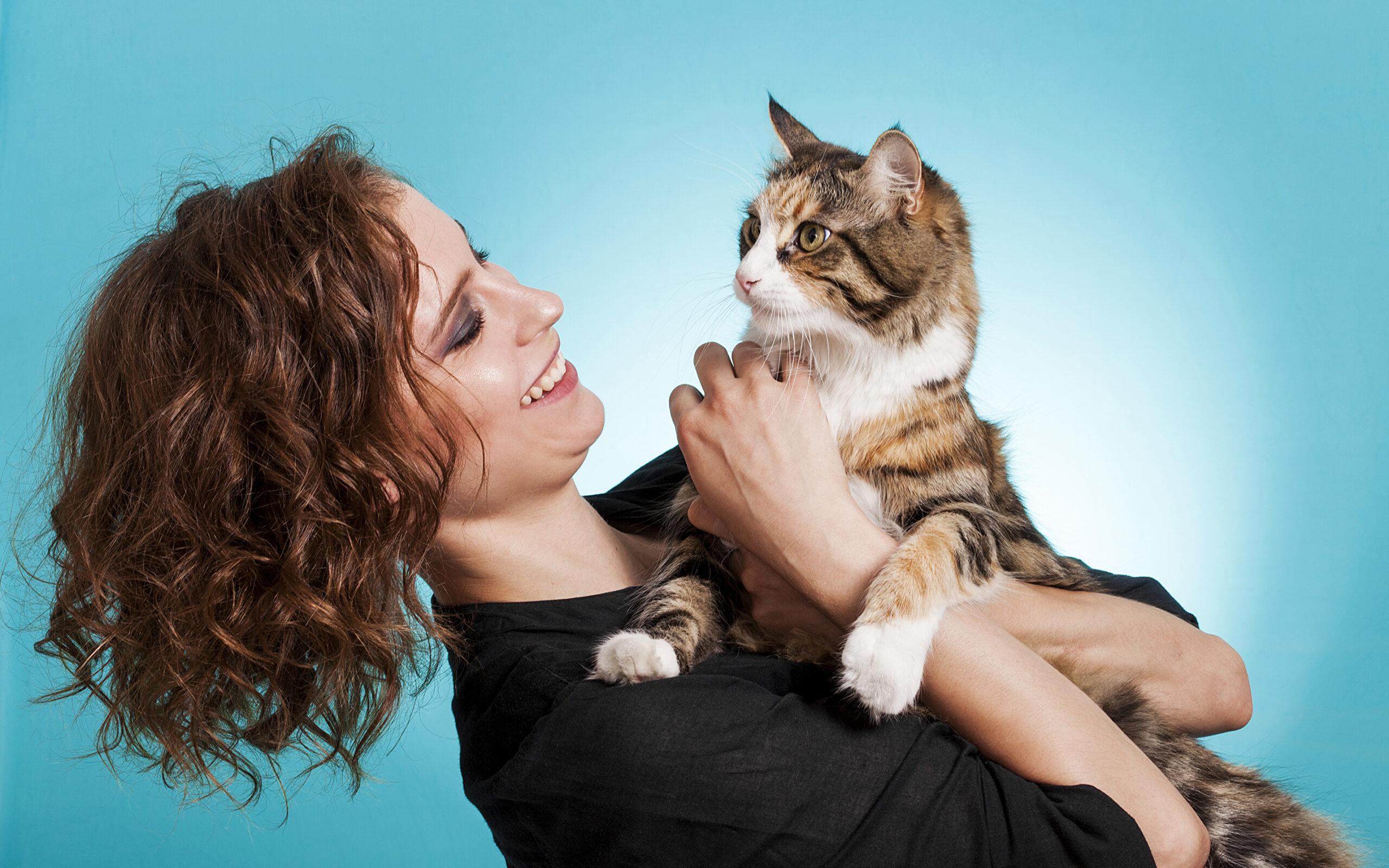 Кошкотерапия или как кошки лечат людей