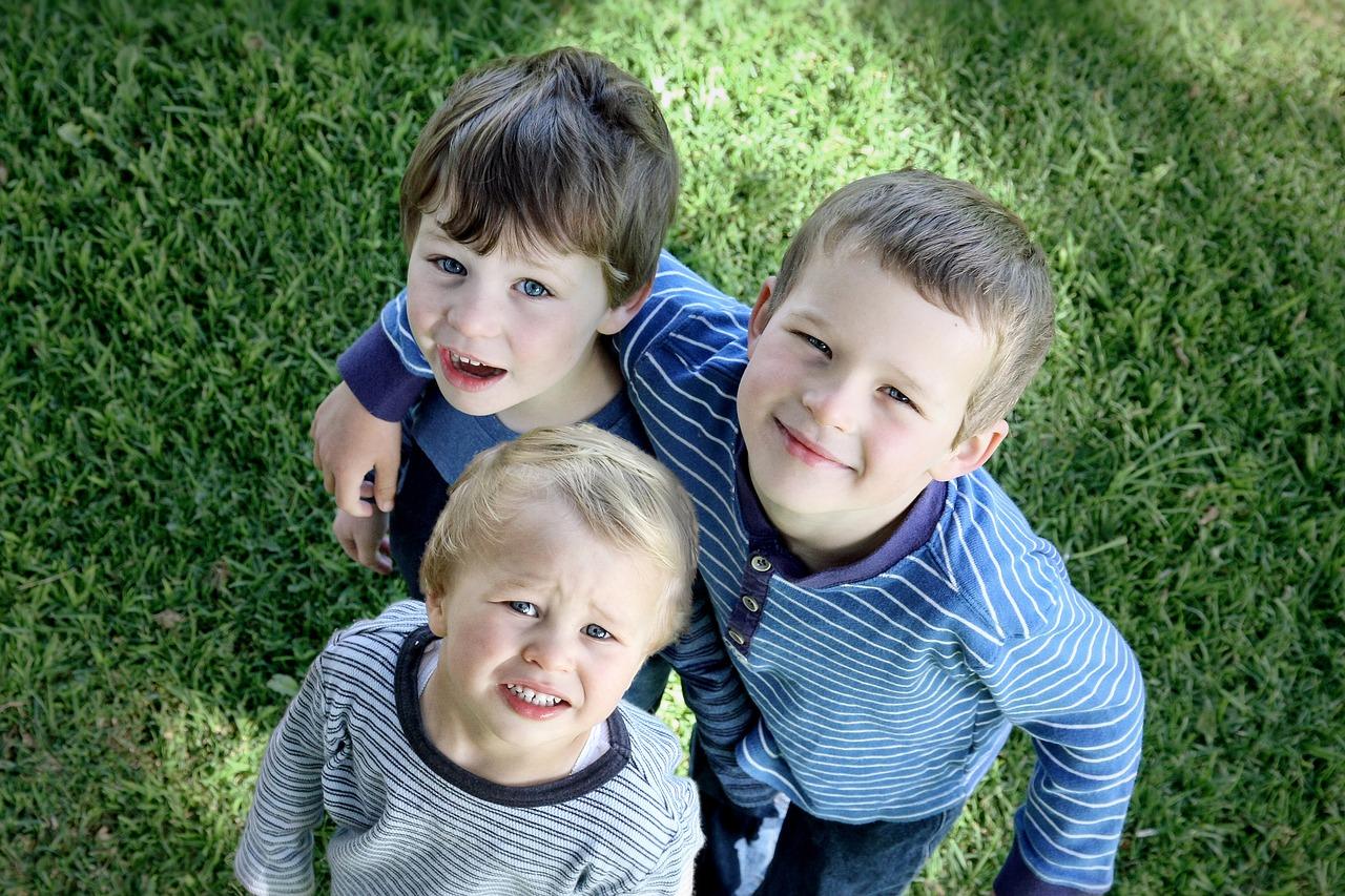 Метод кнута и пряника в воспитании детей