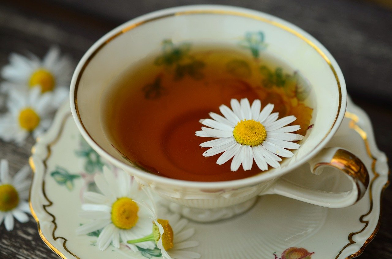 Польза ромашкового чая для здоровья и красоты
