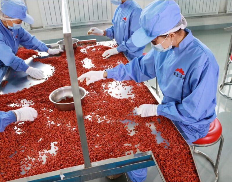 Действительно ли полезны ягоды годжи?