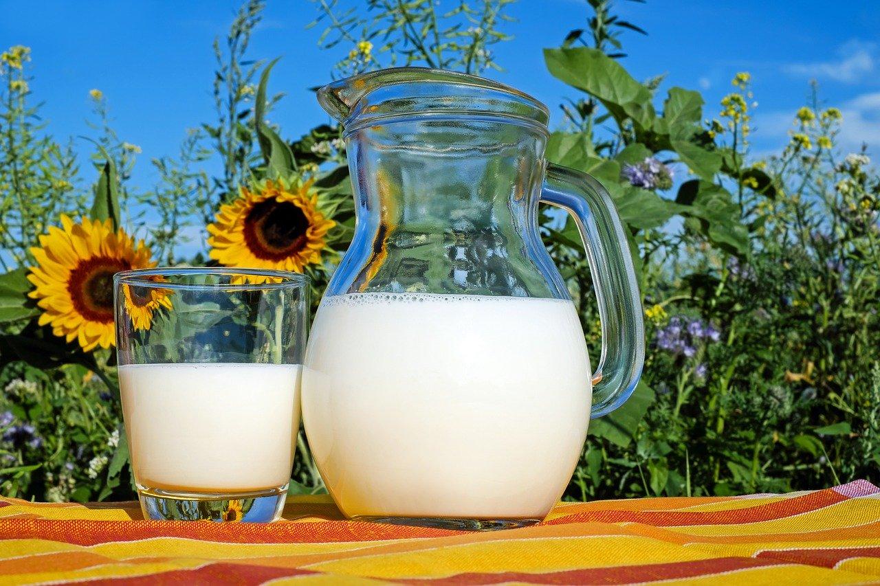 Пейте молоко и худейте!
